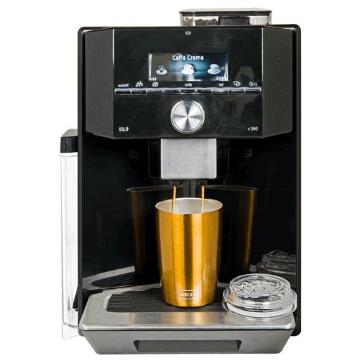 Cana Termos pt  Cafea  LURCH (Germania), oțel inoxidabil, gri, cu capac transparent, 0,3l