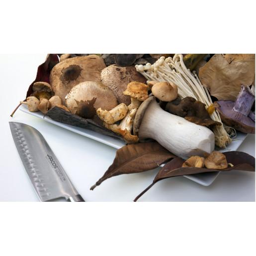 Cutit Santoku (Lama cu Alveole) ARCOS, gama TANGO, 180mm
